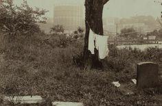 Forgotten Cemeteries