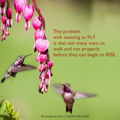Learn to walk before you fly!