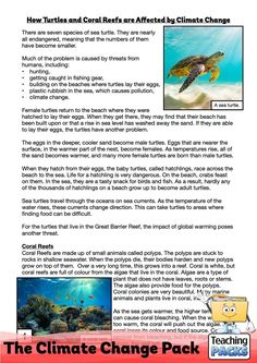 Learn about climate change, its effects and what we can do to help, with our enormous teaching pack. It includes topic guides, a video introduction, printable activity resources and display materials. Science Curriculum, Science Resources, Activities, Teaching Packs, Beach Gear, About Climate Change, Geography