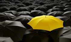 Yellow Umbrella- I use lots of bright umbrellas but it is hard to find a bright yellow one sometimes. I wonder why. Is it due to too many black ones?