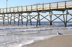 Visit Sunset Beach, NC to experience one of a kind views. Visit Bird Island, check out the Kindred Spirit Mailbox or catch a gorgeous sunrise or sunset. Sunset Beach, Tourism, Sunrise, Surfing, Island, Vacation, Turismo, Vacations, Sunset On Beach