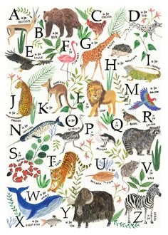 Animal ABC Alphabet poster. Giclee Art Print available in A2 and A3.