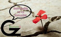 Improbable no es imposible - Gz2puntocero.com