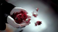 """yohelava: """"Todo en mi te toca Mis labios, mis besos Mis flores, que como latidos Viajan en el viento. ~Yohelava D. L. """""""