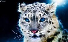 93 Besten Sparkl Bilder Auf Pinterest Fractals Fractal Art Und