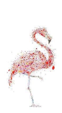 Flamingo on Behance by Ana Enshina