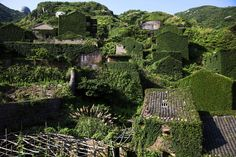 From The Abandoned Fishing Village of Houtouwan, one of 18 photos.Plants grow on houses in the abandoned fishing village of Houtouwan on the island of Shengshan, China, on July 26, 2015. (Damir Sagolj / Reuters)