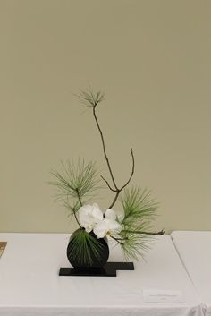 Ikebana -- Living Flowers, Living Art, an exhibit Ikebana Arrangements, Arrangement Floral Ikebana, Small Flower Arrangements, Small Flowers, Beautiful Flowers, Orchid Flowers, Exotic Flowers, Purple Flowers, White Flowers