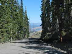 Chittenden Road coming down from Mt. Washburn trailhead in Yellowstone NP 9/21/11