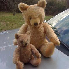 """VINTAGE STEIFF TEDDY BEARS MOHAIR GROWLER JOINTED 24"""" 13"""" STUFFED"""