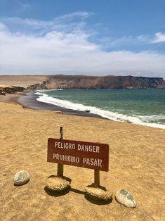 Das Paracas National Reserve befindet sich nahe der Stadt Pisco in Peru. Hier kann man nicht nur Wüsten, endlose Strände und Inseln finden, sondern auch Seelöwen, Delphine und verschiedenste Vögel bewundern. Ein malerisches Plätzchen dieser Erde! Danke @christinaniederl! Peru, Delphine, Around The Worlds, Tours, Instagram, Islands, Thanks, City, Turkey