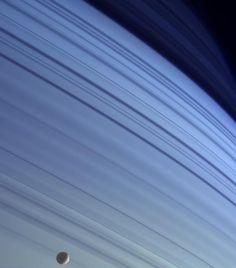 "Saturn's shadows. (Credit: NASA/JPL/Space Science Institute) The moon Mimas is in the foreground. The blue backdrop isn't Saturn's rings. It's the shadows of the rings on the planet's northern hemisphere. When Cassini first went into orbit around Saturn the far north did look blue, but seasonal changes turned that into a golden hue. Mona Evans, ""Cassini Mission and Website"" http://www.bellaonline.com/articles/art23637.asp"