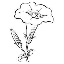 25 Mejores Imagenes De Imagenes De Flores Para Pintar Crafts