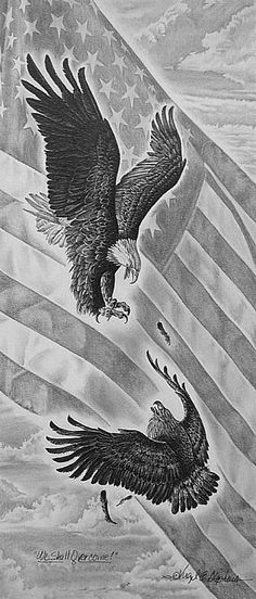 We Will Prevail pencil drawing of the Majestic Eagle & by notevena, $45.00