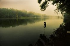 Kinda like Willow Cove in Bass Lake...