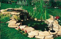 Diy water gardens Budget Makeovers | Birds & Blooms
