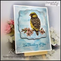 Passionate Paper Creations - Don't miss anything! passionatepapercreations.blogspot.com