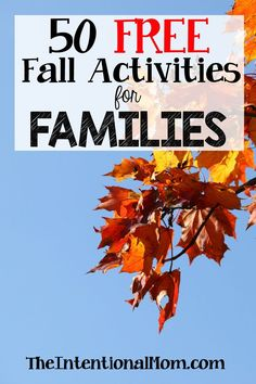 Are you looking for some fun family activities that for fall that are also FREE?…