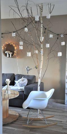 Un albero dentro casa.