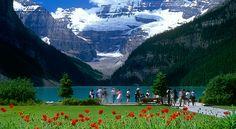 Αποτέλεσμα εικόνας για Canadian rockies