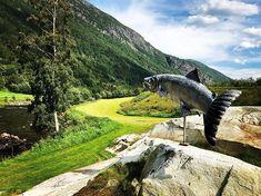 #todalen #norway My World, Norway, Waterfall, Outdoor, Outdoors, Waterfalls, Outdoor Games, Rain, Outdoor Living