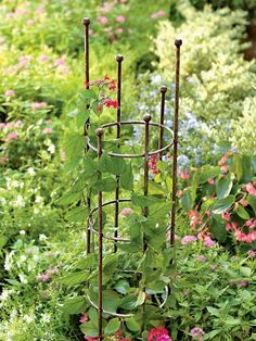 """For the clematis i'll plant;;;""""Jardin round trellis"""" powder coated steel 5 ft 64.95 at Gardener's Supply"""