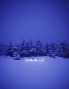 """Jung Lee - Neon Installations """"Tell Me The Truth"""""""