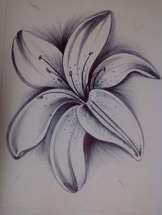 Tattoos Discover Pin by shailendra kariyare on art sketches pencil drawings draw art drawi Pencil Drawings Of Flowers Pencil Shading Flower Sketches Pencil Art Drawings Art Drawings Sketches Cartoon Drawings Amazing Drawings Love Drawings Easy Drawings Easy Flower Drawings, Beautiful Flower Drawings, Pencil Drawings Of Flowers, Amazing Drawings, Pencil Art Drawings, Love Drawings, Easy Drawings, Tattoo Drawings, Lilies Drawing