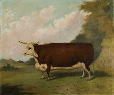 A prize Hereford bull folk art portrait painting in a landscape, by Richard Whitford. .
