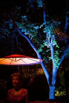 Umlauf Garden Party 2013. Uplighting, Tree Lighting + Festoon String Lights. Photos by Studio Uma.