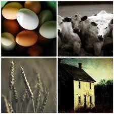 Farm life - Google Search