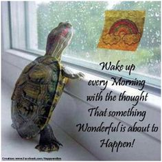 ".....something ""Wonderful"" is going to happen today!!!"