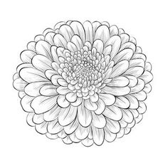 1144 best cute little crafts images drawings flowers activity toys Future TV clipart of beautiful monochrome black and white flower isolated on white background search clip art illustration murals drawings and vector eps graphics