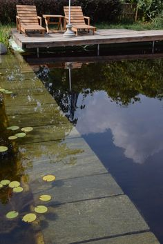 natural swimmingpool | biopool | project suingiardino - biopiscina | laghetto naturale | progetto suingiardino