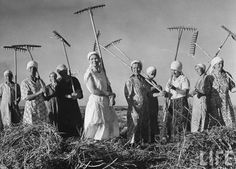Margaret Bourke-White: Russian women's brigade wielding crude rakes to gather up hay harvest on a collective farm outside the capitol. August 1941