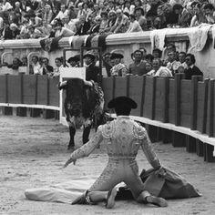 Larga de Paquirri, Nîmes, 1980©Lucien Clergue