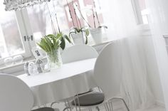 Dining area in white and white
