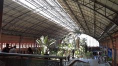 Estação de trens de Atocha - Madrid - Espanha - Junho 2014