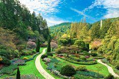 Butchart Gardens, Victoria, B. Most Beautiful Gardens, World's Most Beautiful, Beautiful World, Beautiful Places, Beautiful Pictures, Buchart Gardens, Versailles Garden, Victoria Island, Organic Plants