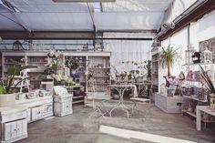 Garden interno