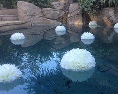 Popular items for pool wedding on Etsy