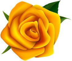 Clipart de Rosas para montagens digitais