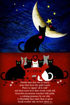 ♥     Cats Poem     ♥