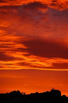 Best Sunset EVER at Jumbo Rocks, Joshua Tree National Park, California