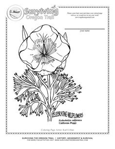Printable Activity Sheets for Kids These Printable