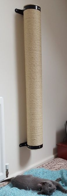 XL Wall Mounted Cat Scratching Post UK Handmade Feedback Coloring, Different . - Self-made-Möbel - Diy Cat Toys, Ideal Toys, Cat Playground, Cat Scratcher, Cat Room, Cat Condo, Pet Furniture, Cat Scratch Furniture, Furniture Dolly