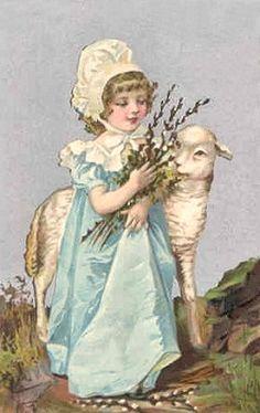 charming girl and lamb