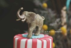 Simply Surreal E's Birthday / Carnival/Circus - Photo Gallery at Catch My Party Circus Decorations, Carnival Themes, Party Themes, Party Ideas, Circus Birthday, Circus Party, 1st Birthday Parties, Carnival Baby Showers, First They Came