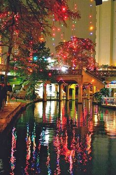 Riverwalk, San Antonio, Texas - This is such a beautiful space all year round but especially during the Christmas holidays. San Antonio is my home and whenever I go home I have to go to the Riverwalk. Dream Vacations, Vacation Spots, San Antonio Texas Riverwalk, The Places Youll Go, Places To See, Beach Paradise, Beautiful World, Beautiful Places, Amazing Places