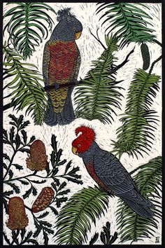 GANG-GANG COCKATOO & WOLLEMI PINE 75 X 50 CM EDITION OF 50 HAND COLOURED LINOCUT ON HANDMADE JAPANESE PAPER $1,250